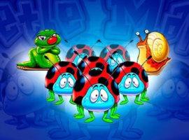 Beetle Mania kostenlos – das tolle Käferspiel